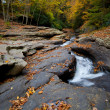 Autumn forest rocks creek in the yellow trees foliage woods — Stock Photo #13857346
