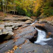 Autumn forest rocks creek in the yellow trees foliage woods — Stock Photo #13857361