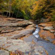 Autumn forest rocks creek in the yellow trees foliage woods — Stock Photo #13857363