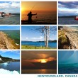 Newfoundland Canada Landscapes Collage Postcard — Stock Photo