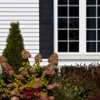 Stock Photo: Residential House Window