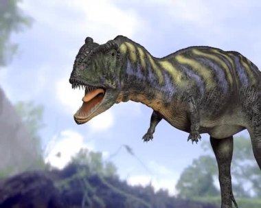 Tyrannosaurus — Stock Video