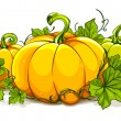 Pumpkins on white background — Image vectorielle