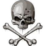 Skull bone sign represent danger or poison — Stock Vector #20183745