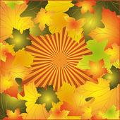 Podzimní pozadí s listy javoru — Stock vektor