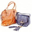 Image of a female handbag eligantnoy — Stock Photo