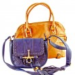 Image of a female handbag eligantnoy — Foto Stock
