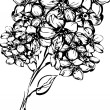 Sketch one sprig with little flowerets — Image vectorielle