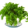 Seasoning green dill and parsley on a plate — Foto Stock