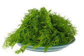 Seasoning green dill on a plate — Stock Photo