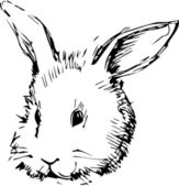 Image of a rabbit with long ears — Stock Vector