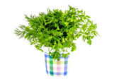 Green parsley and dill seasoning  — Stock Photo
