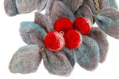Preview branch red ash made from wool  — Stockfoto