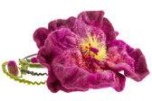 美しい装飾バーガンディの花の頭をフープします。 — ストック写真