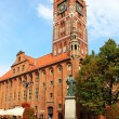 Town hall, Torun old town, Poland - Stock Photo