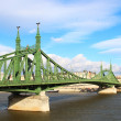Liberty Bridge, Budapest, Hungary — Stock Photo