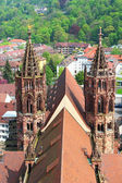 Freiburg Minster, Germany — Stock Photo