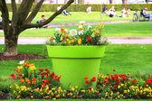 Beautiful flowerbed in the park in Strasbourg, France — Zdjęcie stockowe