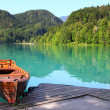 Bled lake, Slovenia — Stock Photo #49609569