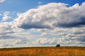 Krajobraz lato — Zdjęcie stockowe