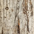 Obsolete painted wood — Stock Photo #15759049