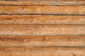 木の丸太 — ストック写真