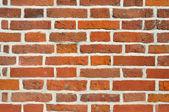 Mur de brique — Photo
