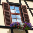 Window with shutters and box of different colorful flowers — Stock Photo