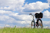 Travel on a bicycle — Stock Photo