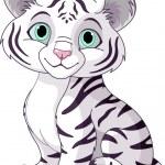 cub tigre blanc — Vecteur