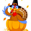 Stock Vector: Thanksgiving Turkey in the pumpkin