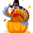 Thanksgiving Turkey in the pumpkin — Stock Vector