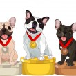 Winners of Dog competition - Stock Vector