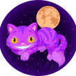 Magic cat — Stock Vector