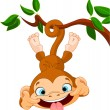 Royalty-Free Stock Vector Image: Monkey hamming