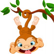 Monkey hamming - Stock Vector