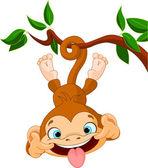 Macaco de hamming — Vetorial Stock