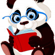 Cute Panda Education — Stock Vector
