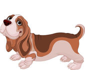 Basset Hound — Stock Vector