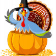 Thanksgiving Turkey in the pumpkin — Stock Vector #31129841