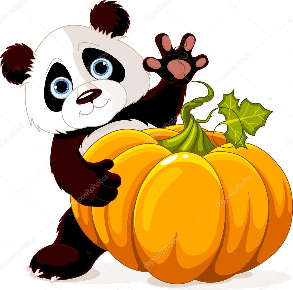 可爱小熊猫抱着巨大的南瓜
