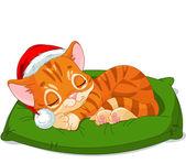 Christmas Kitten Sleeping — Stock Vector