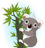 Cute koala on a tree — Stock Vector