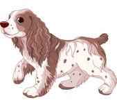 Spaniel hond — Stockvector