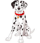 Cute Dalmatian Dog — Stock Vector