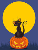 Cat is sitting on Halloween pumpkin — Stock Vector