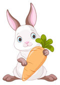 Bunny holding a large carrot. — Stock Vector