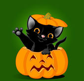Black kitten jumping out of pumpkin — Stock Vector