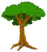 Illustration of majestic tree — Stock Vector