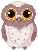 Owlet stares wide-eyed — Stock Vector